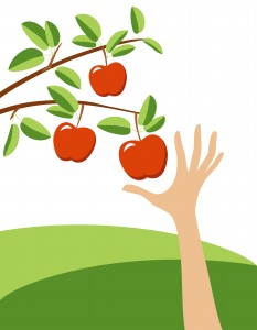 Reaching-Apple-Tree